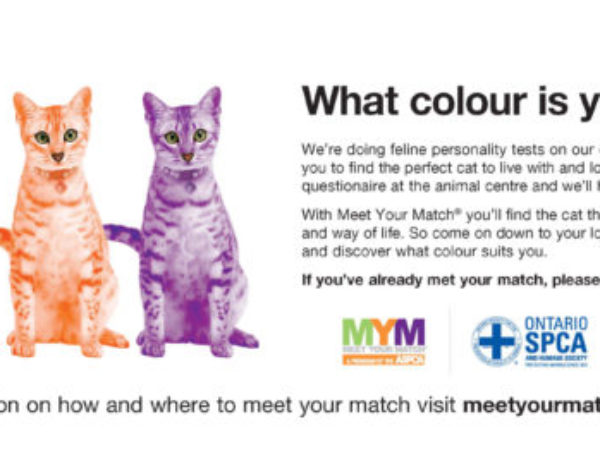 Ontario SPCA, Meet Your Match logo