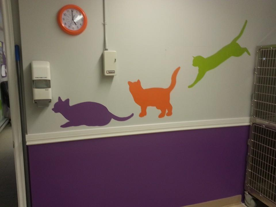 Cat decals on shelter wall