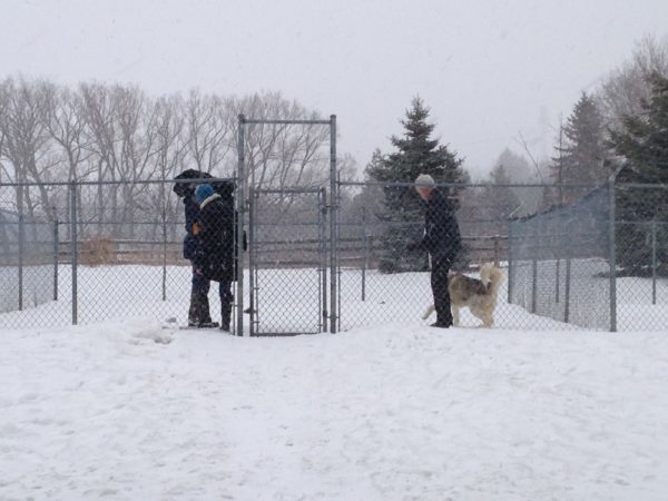 Discovery Channel filming at Ontario SPCA Provincial Education & Animal Centre