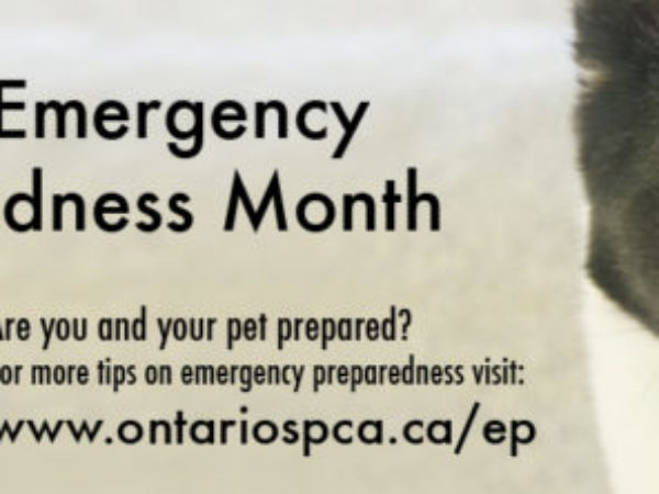 Emergency Preparedness Month