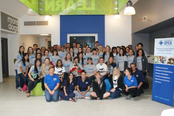 AMEX Canada Volunteers