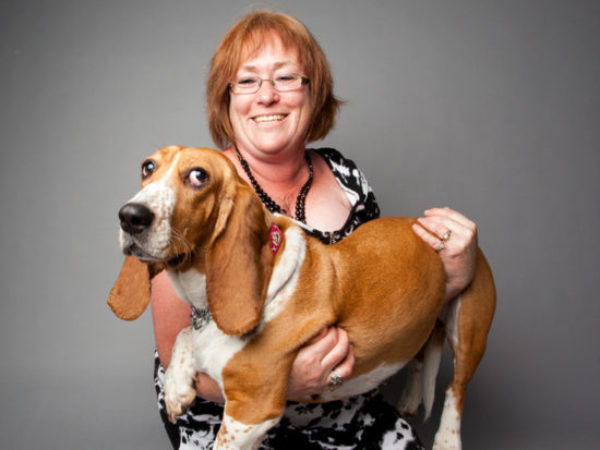 adopter with basset hound