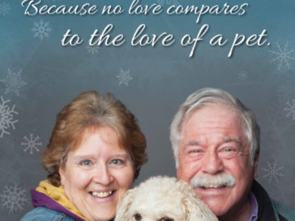 iAdopt for the Holidays dog poster