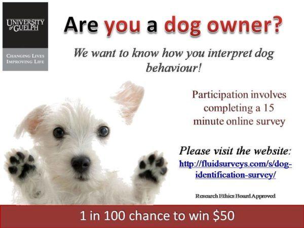University of Guelph Dog Behaviour Study
