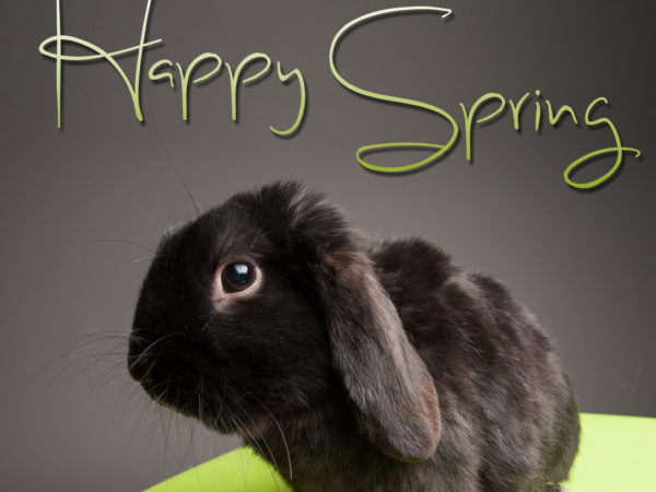 Spring, spring safety