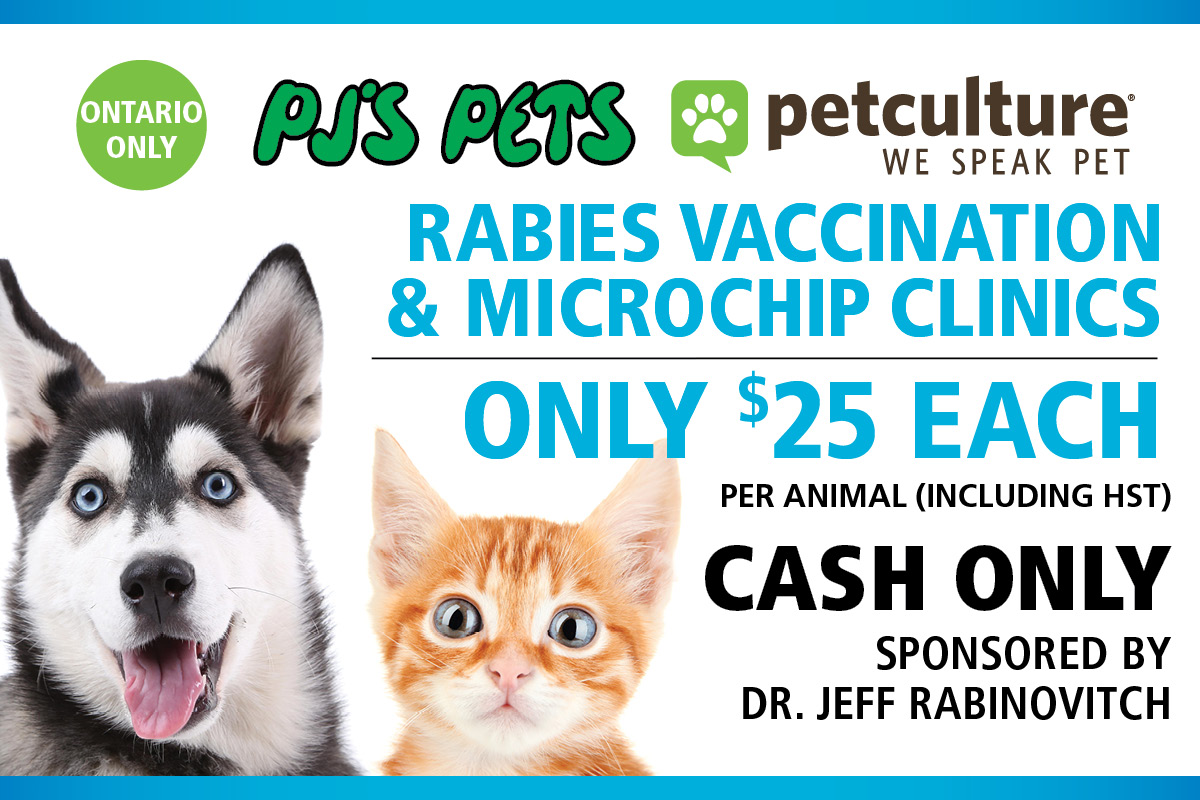 CHECK THIS OUT: Rabies & Microchip Clinics in Ontario