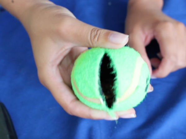 DIY Dog toys, treats