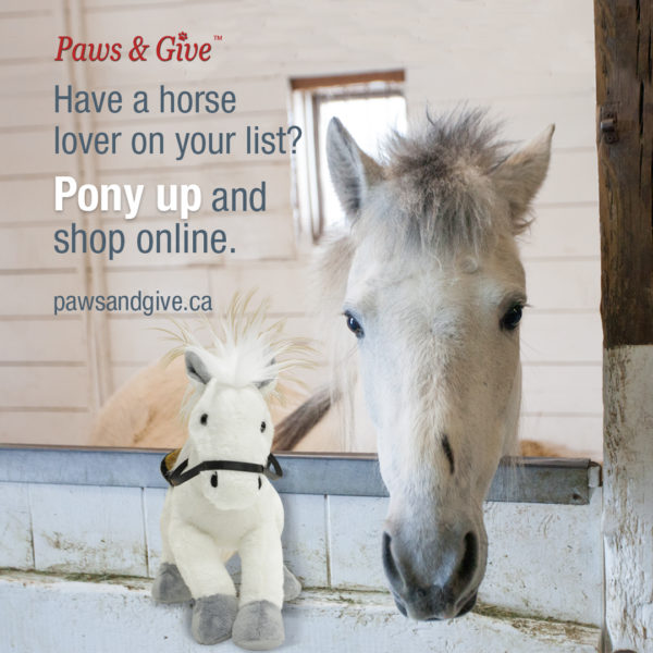 paws and give, small animal lovers