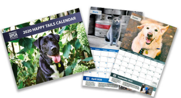 2020 Happy Tails Calendar, gifts that give back