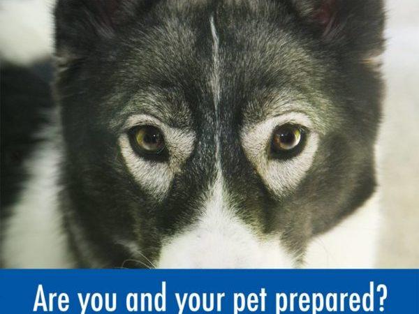 Emergency Preparedness Week.