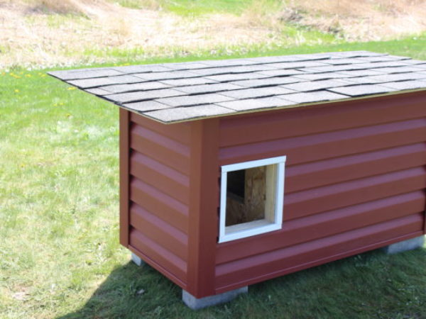 how to video, step-by-step, ideal doghouse