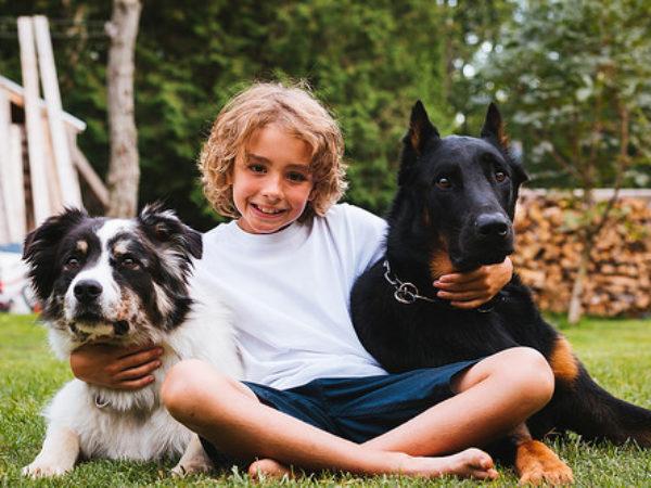 long weekend, pets, pet-friendly activities