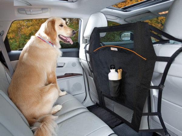 kurgo, pet safety, travel pet safety
