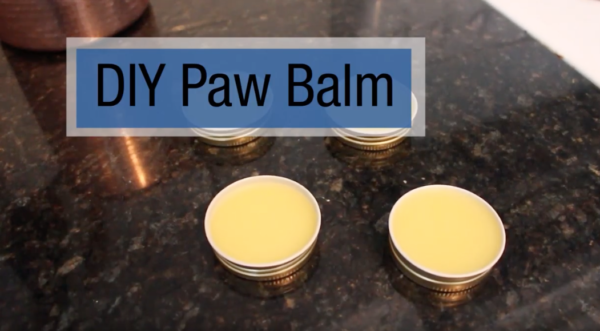 DIY Pet paw balm