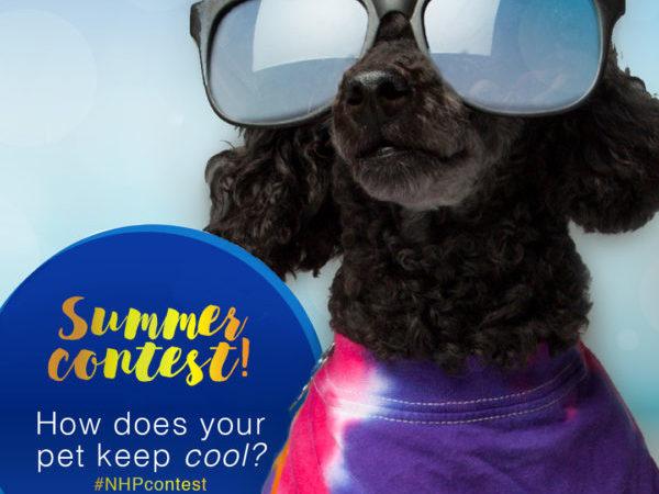 summer photo contest, ontario SPCA, pets