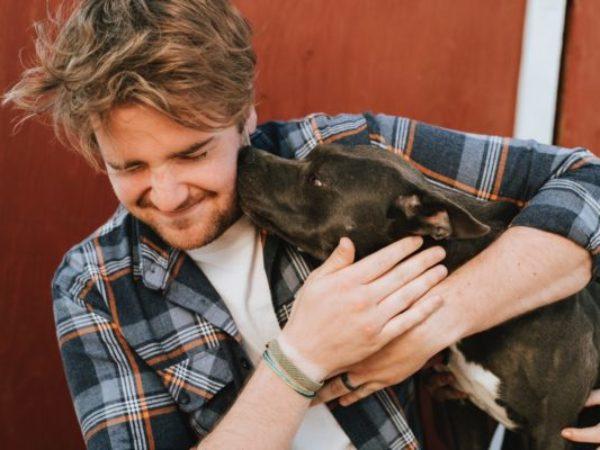 adopting a shelter dog, dog adoption, dogs