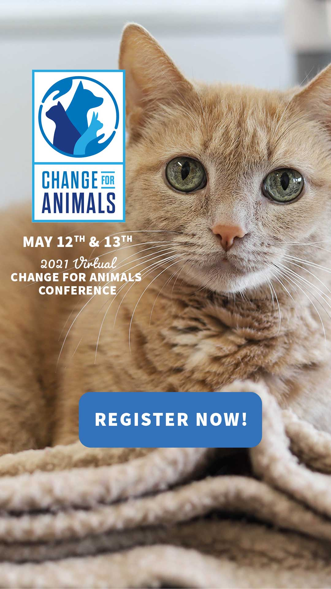 Cat promoting conference