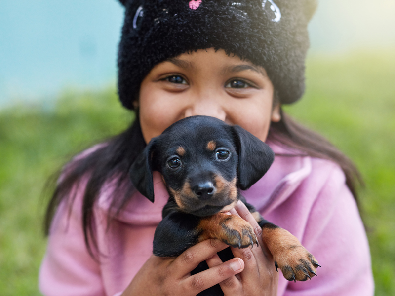 little girl holding puppy