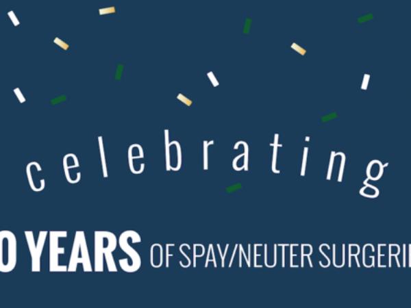 spay/neuter services, fix your pet