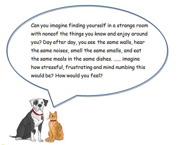 dog and cat enrichment speech bubble