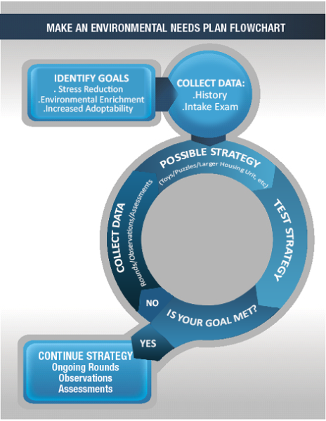 make a plan flowchart
