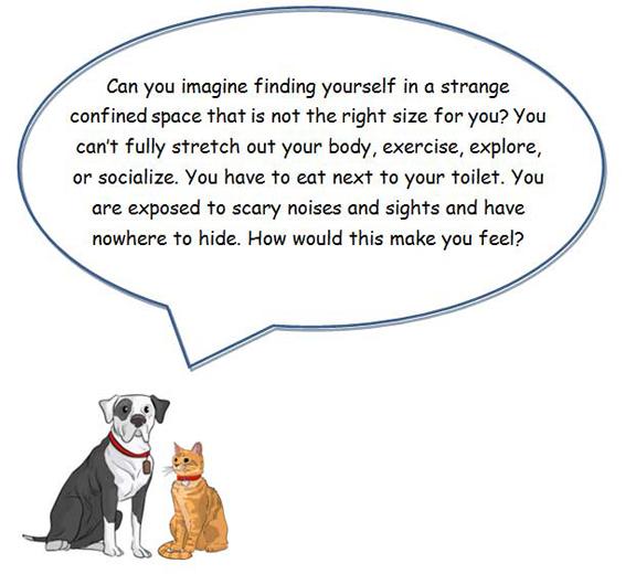 small animals speech bubble