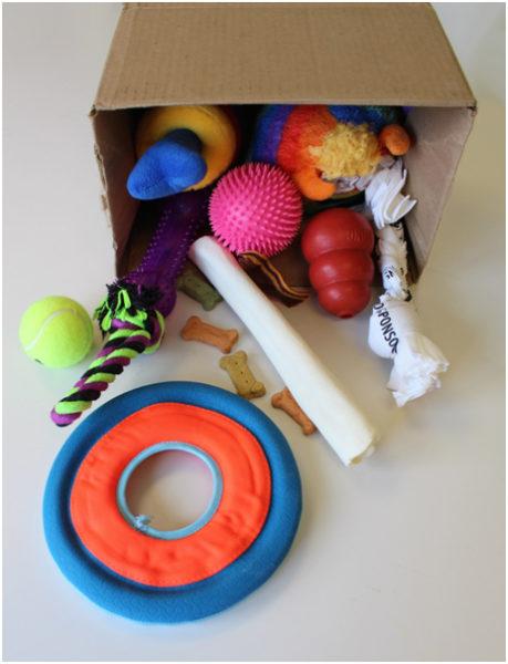 dog toy box