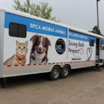 mobile animal wellness services, spay neuter
