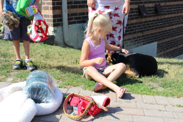 barrie housing corporation, ontario spca, wellness event