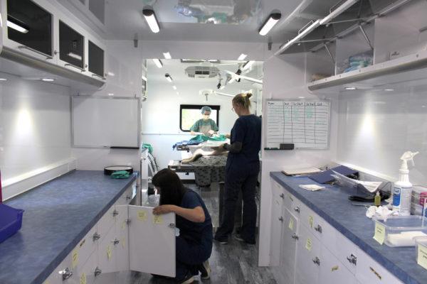 mobile unit, spay neuter, ontario spca