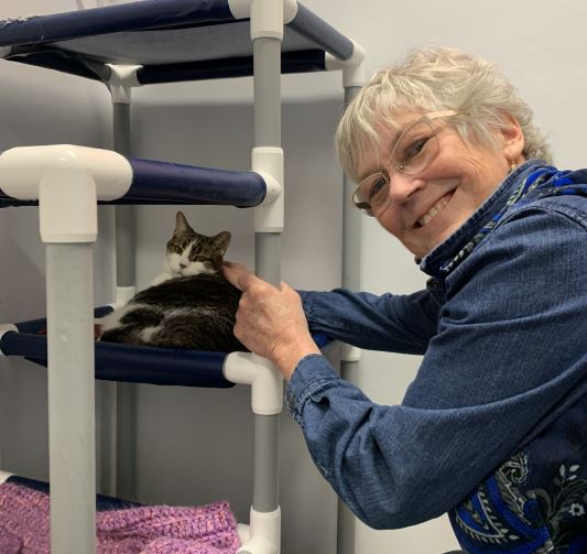 cat adoption, woman with cat