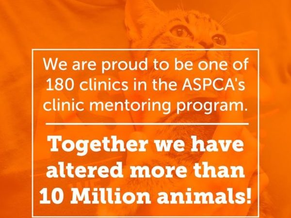 aspca, 10 million animals altered