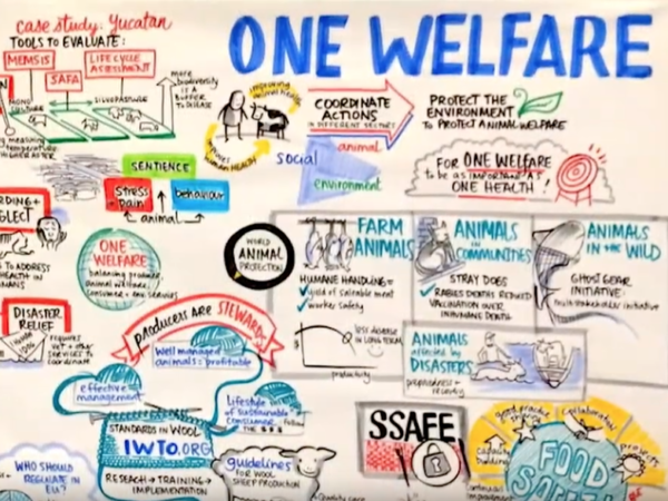 one-welfare-diagram
