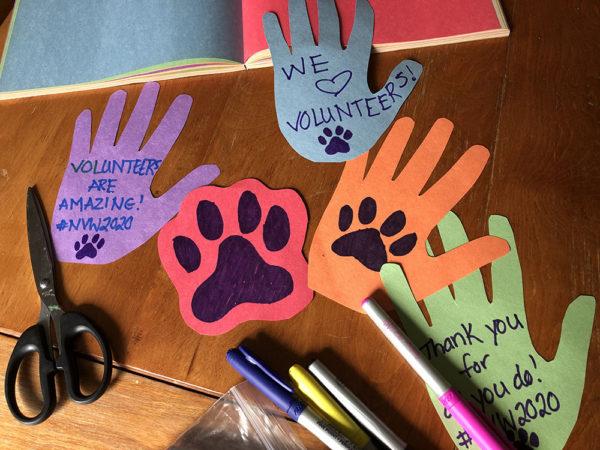 National Volunteer week, media release, hand print cut outs