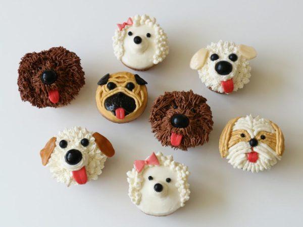 cupcakes, cupcake, echoage, birthday parties, birthday party