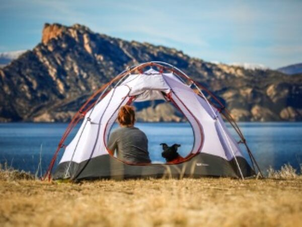 camping, camp, camping with pets