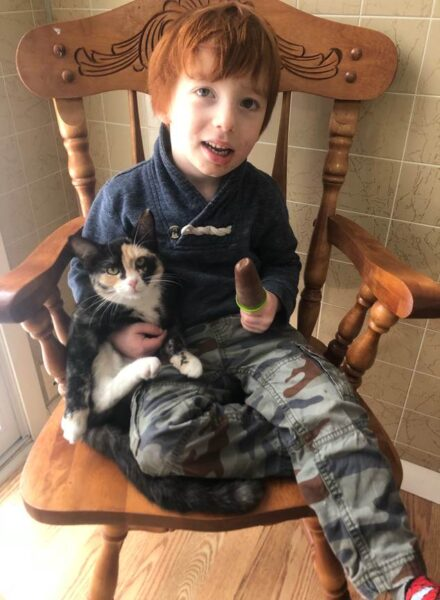 KitKat, urgent Animal care fund