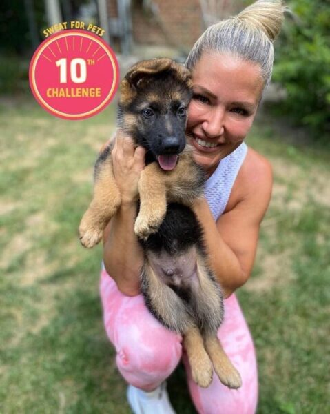 sweat for pets success