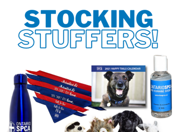 stocking stuffers, paws and give, holiday giving