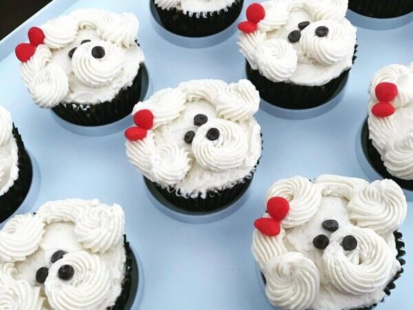 cupcakes, COVID, campaigns, dog cupcakes