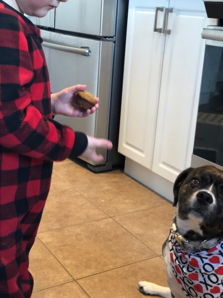 national cupcake day recipe