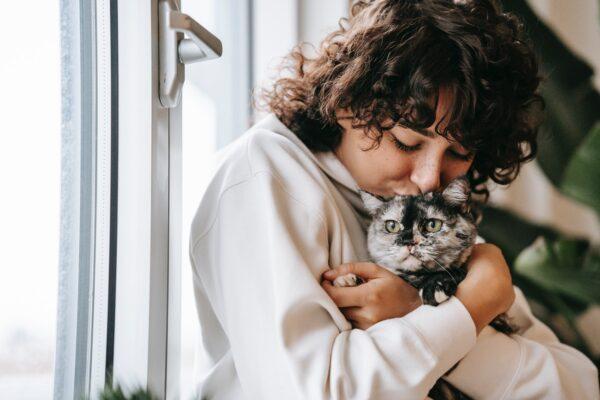 the grind, renfrew county pet pantry, hugging cat