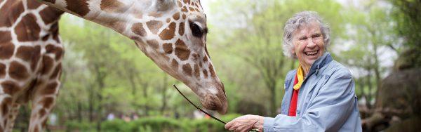 Giraffe-page-header
