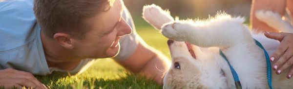 man-with-puppy-in-grass-1200×363