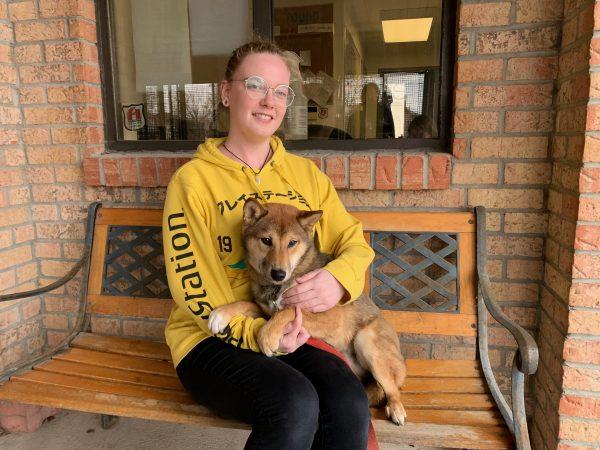 bandit, dog rehabilitation centre
