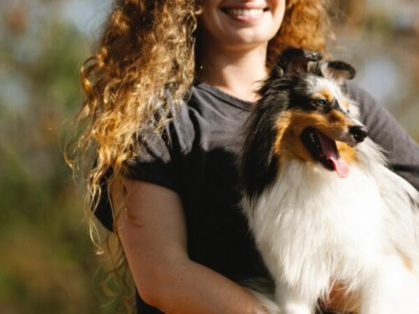 labour day with pets, safety tips