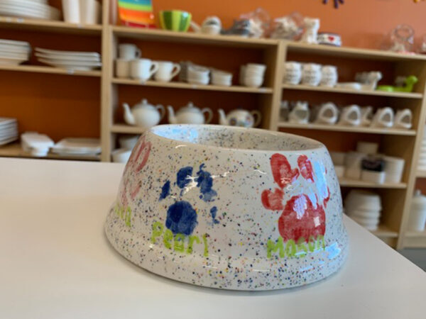 dog bowl with paws