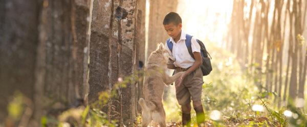 child-dog-as-header2