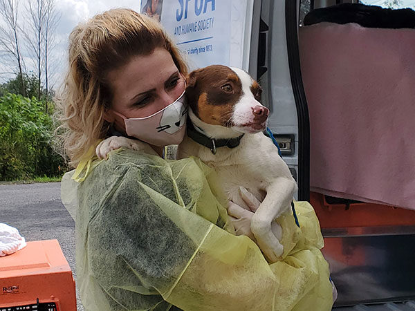 staff member with dog on transport