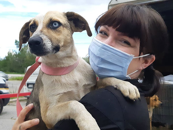 staff member with dog